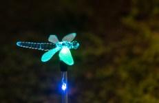 Lights at night-1