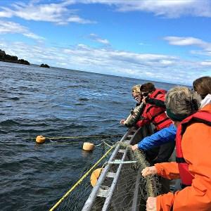 alaska-fishing