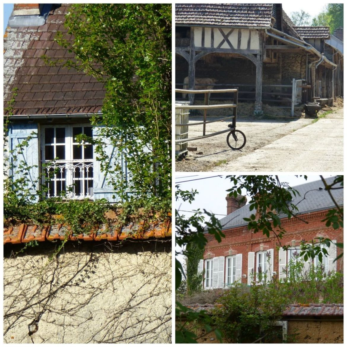 touring the normandy countryside on a my french country home brocante tour