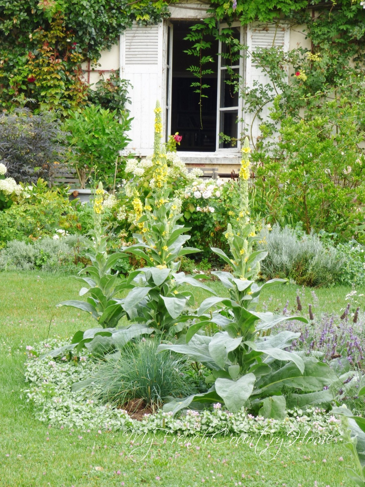 parterres-update-my-french-country-home.5jpg