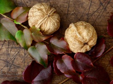 walnuts with autumn leaves