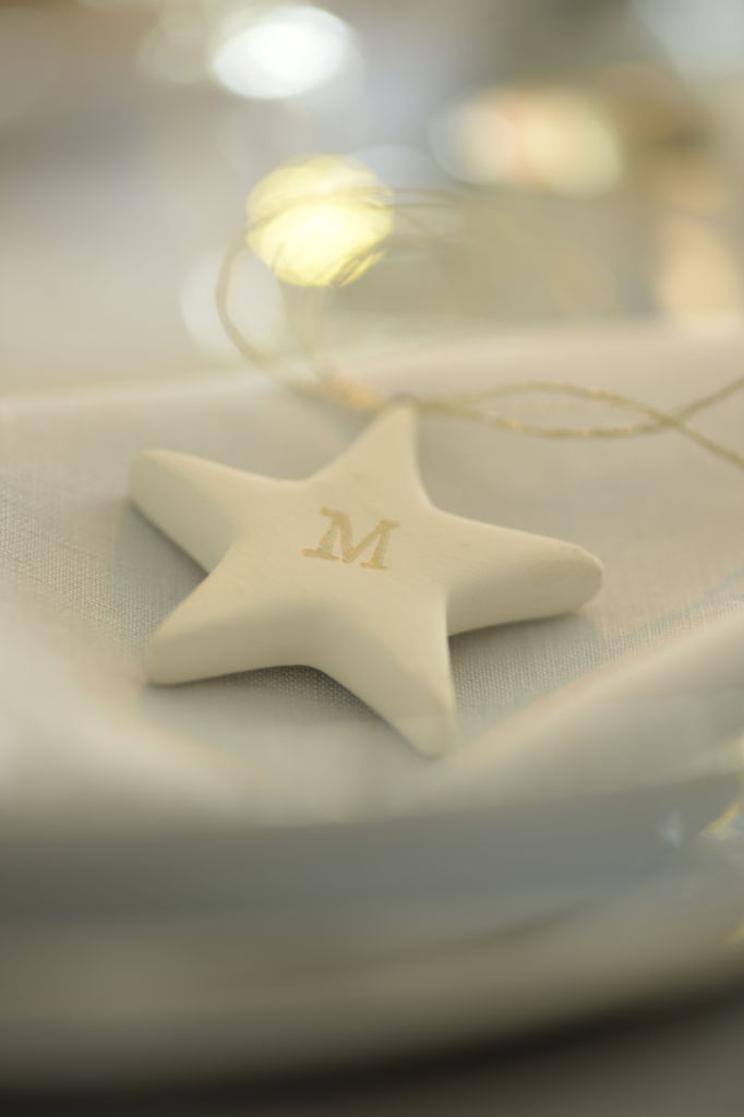 my-french-country-home-christmas-marie-paule-faure-2jpg