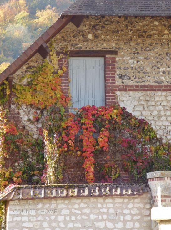 door with red virginia creeper