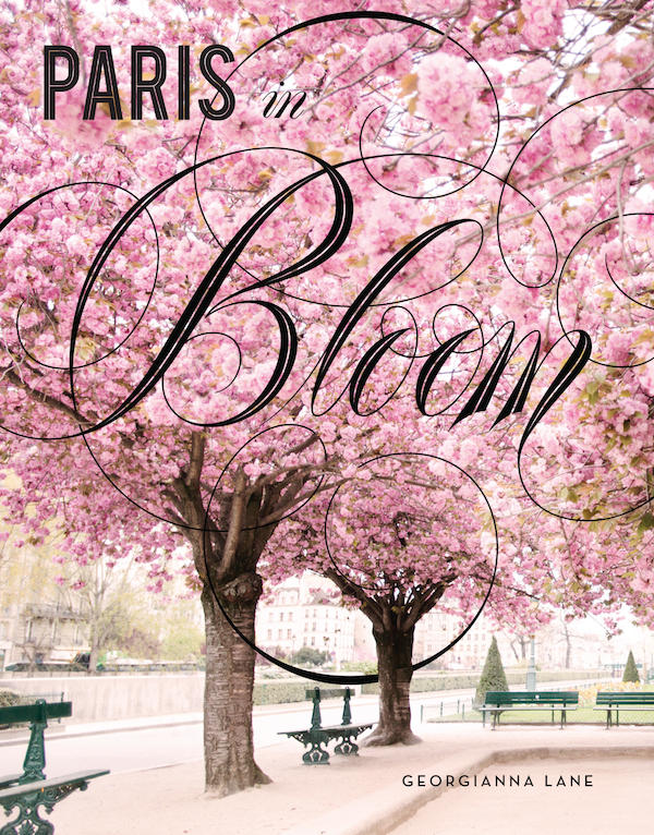 cover photo Paris in Bloom