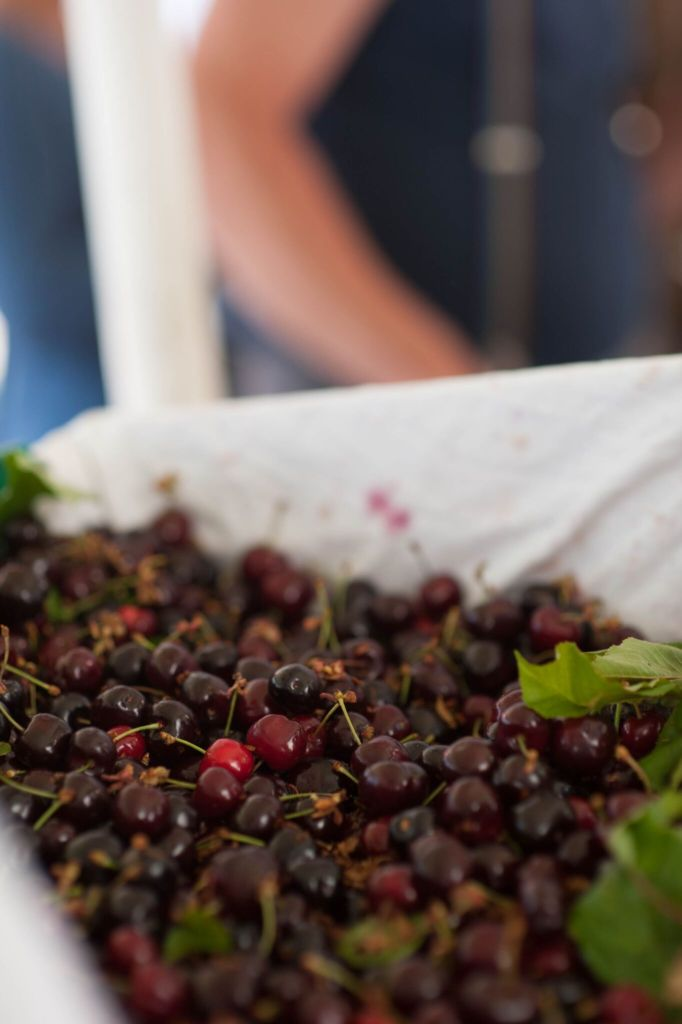 cherries at the market