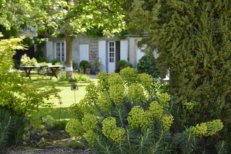 guest and house La maison et l'atelier garden detail