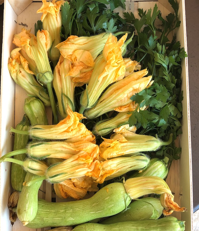 Fleurs de courgette- MY FRENCH COUNTRY HOME