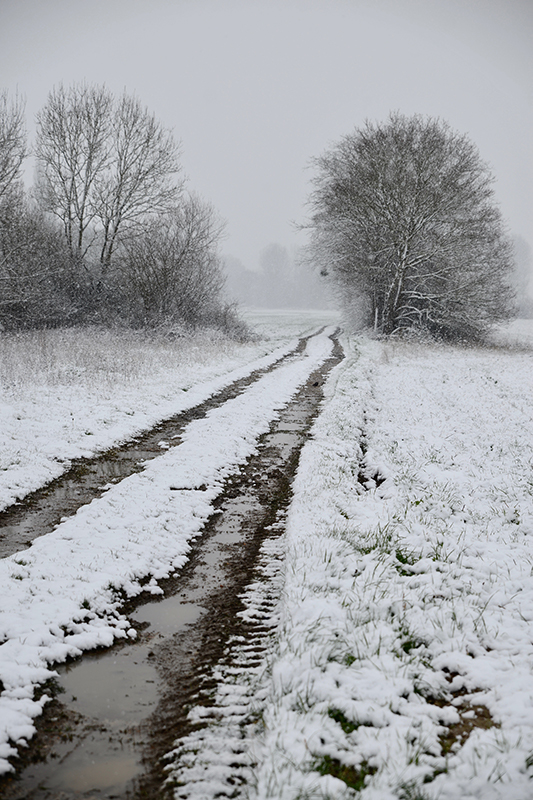 A French country path covered in snow- looking forward to christmas with the family- MY FRENCH COUNTRY HOME