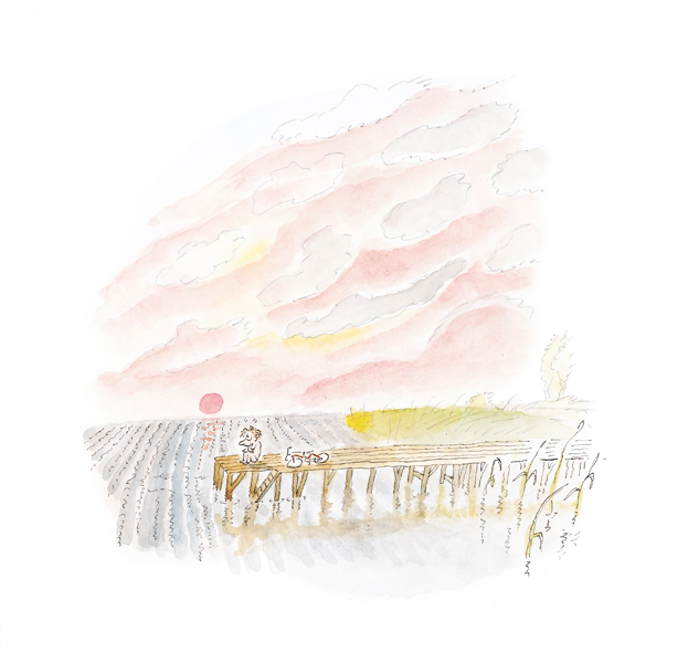 sitting on the pier at sunset- jean-jacques sempé, artist and poet- MY FRENCH COUNTRY HOME