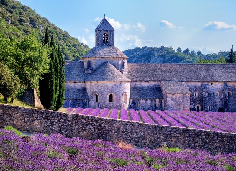 Provence tour with lavender fields