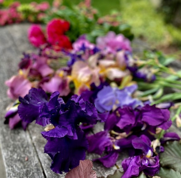 flowers picked and laid on table