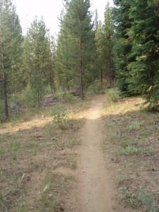 Haulin' Aspen trail