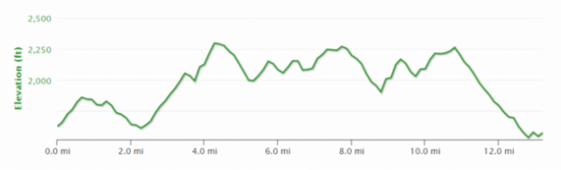 The Wine Run - Course Profile