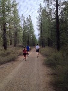 Bizz Johnson - trail