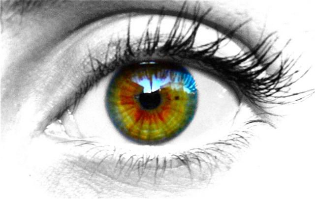 Purpleapple482-eye