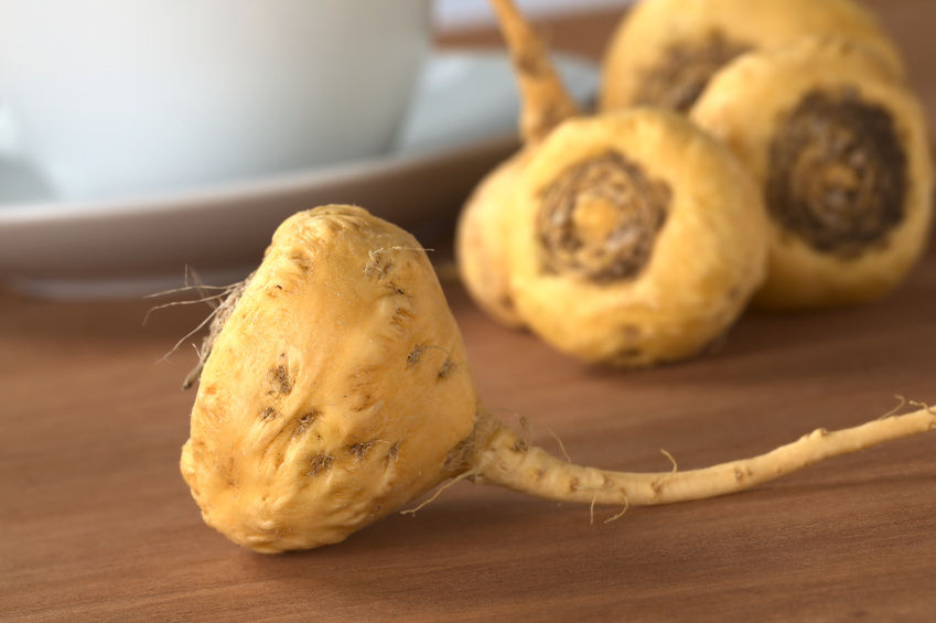 Maca Side Effects May Not Be What They Seem To Be