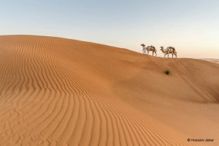 Magical is the word that describes it all. The desert with its majestic dunes, the camels, the solitude, the whole atmosphere