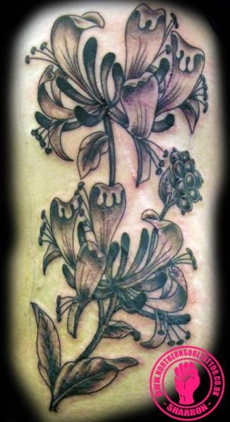 honeysuckle-tattoo