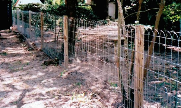 Best Old Fashioned Yard Ornamental Wire Fencing This Month