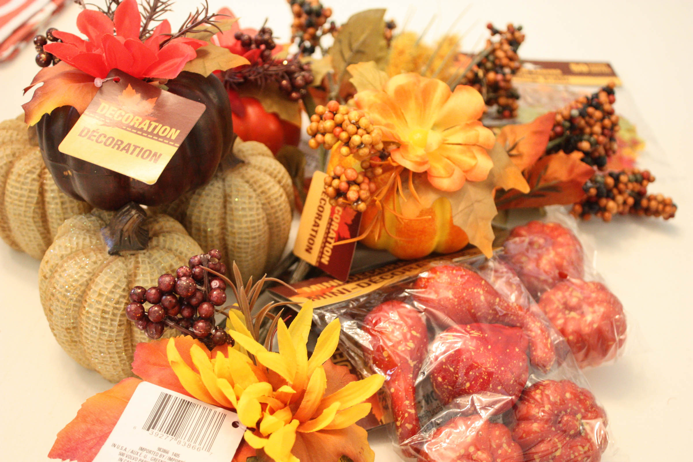 Best Decorating For Fall From Dollar Tree This Month