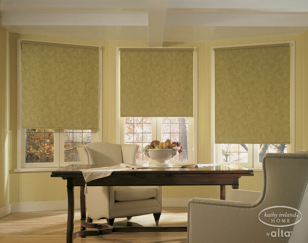Best Roller Shades In Charlotte Raleigh Nc Carolina Blind This Month