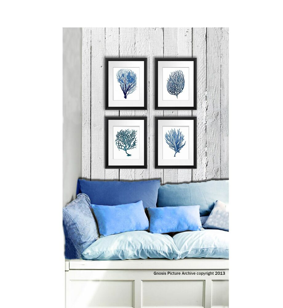 Best Wall Art Beach Decor Set Of 4 Blue Sea Coral Prints This Month