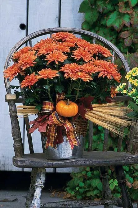 Best 38 Cozy And Sweet Fall Bridal Shower Ideas Weddingomania This Month