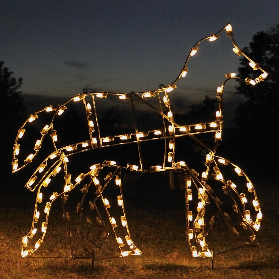 Best Shop Holiday Lighting Specialists 5 25 Ft Animated This Month