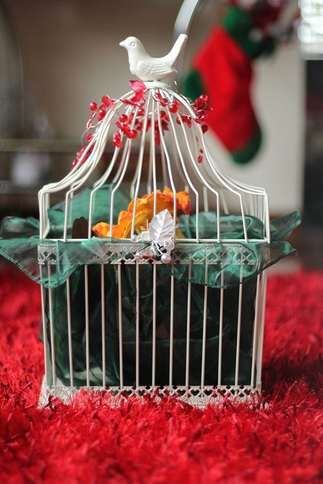 Best 25 Diy Bird Cage Ideas On Pinterest Diy Parakeet This Month