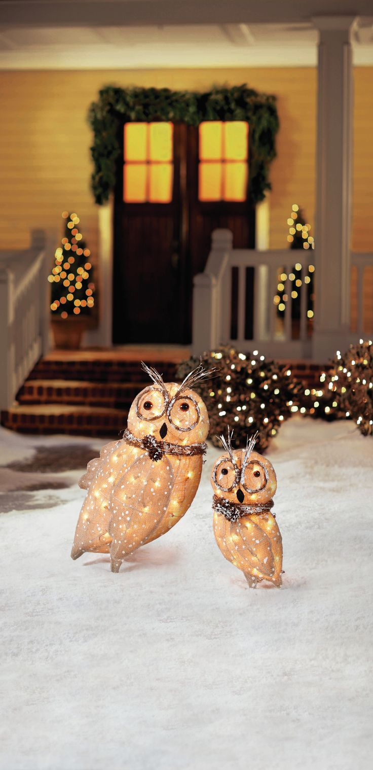 Best Owl We Want For Christmas Is To Decorate Then Celebrate This Month