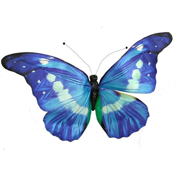 Best Blue Paper Butterfly 15 Liked On Polyvore Featuring This Month