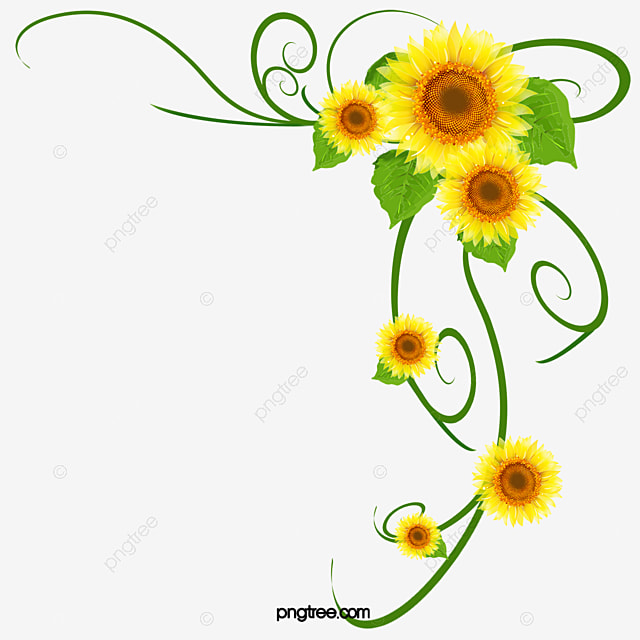 Best Beautiful Flowers Background Decoration Beautiful This Month