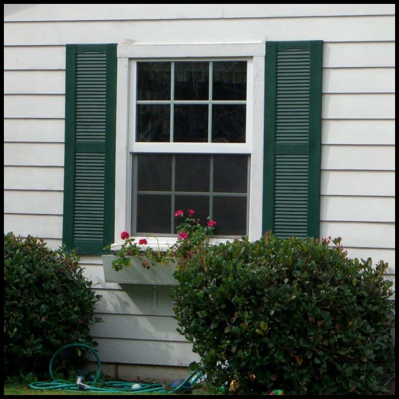 Best Vinyl Louvered Shutters Exterior Decorative Hooks And This Month