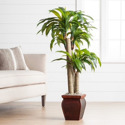 Best Decorating Without Fake Plants Billingsblessingbags Org This Month