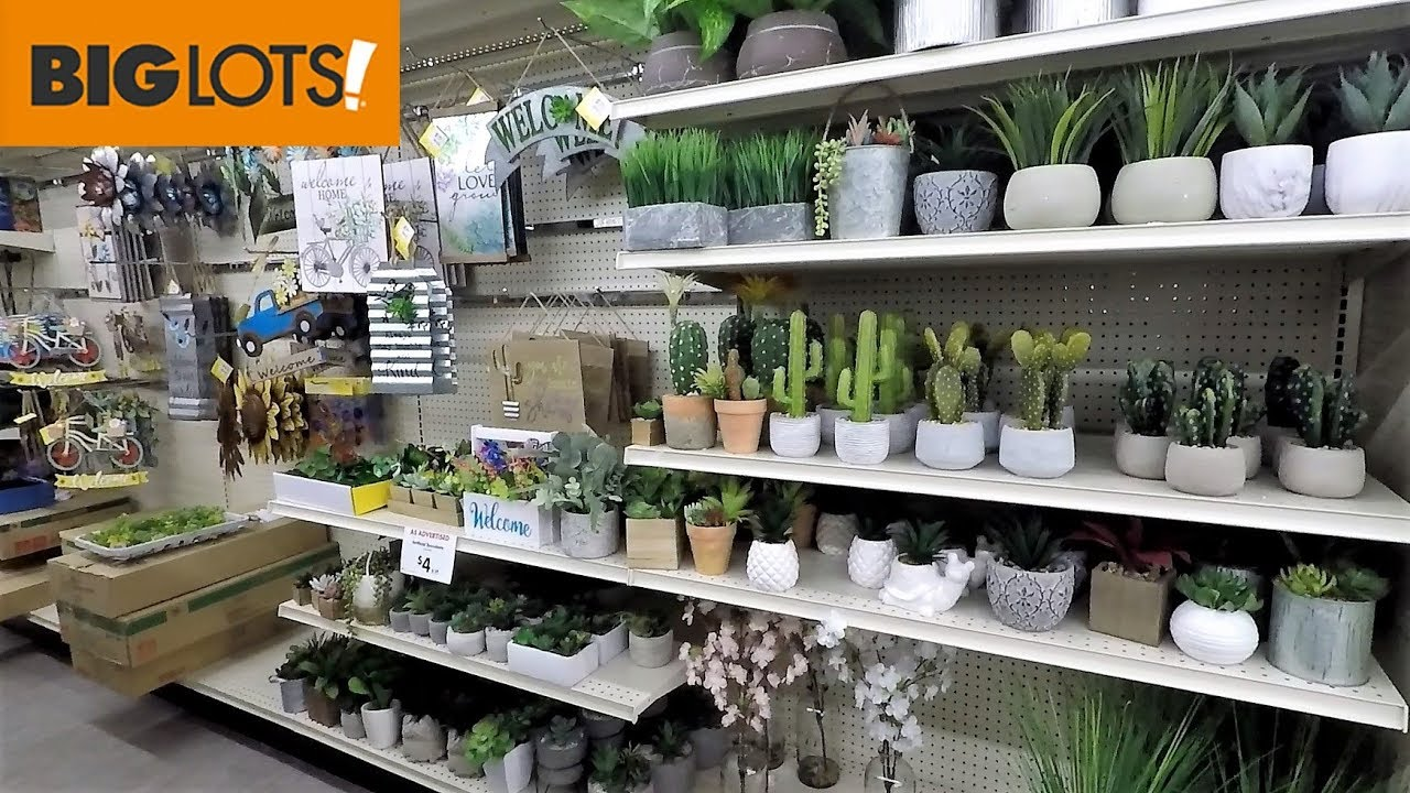 Best Big Lots Spring 2019 Home Decor Shop With Me Shopping This Month