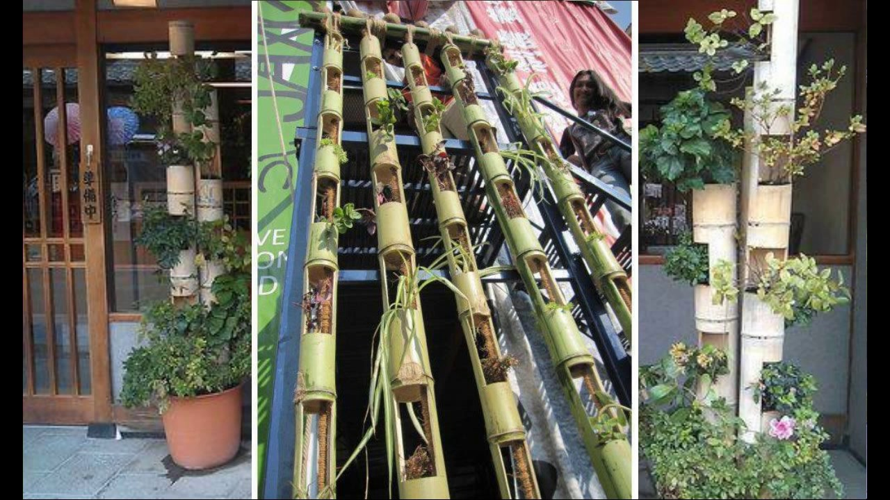 Best Diy Bamboo Decorating Ideas Youtube This Month