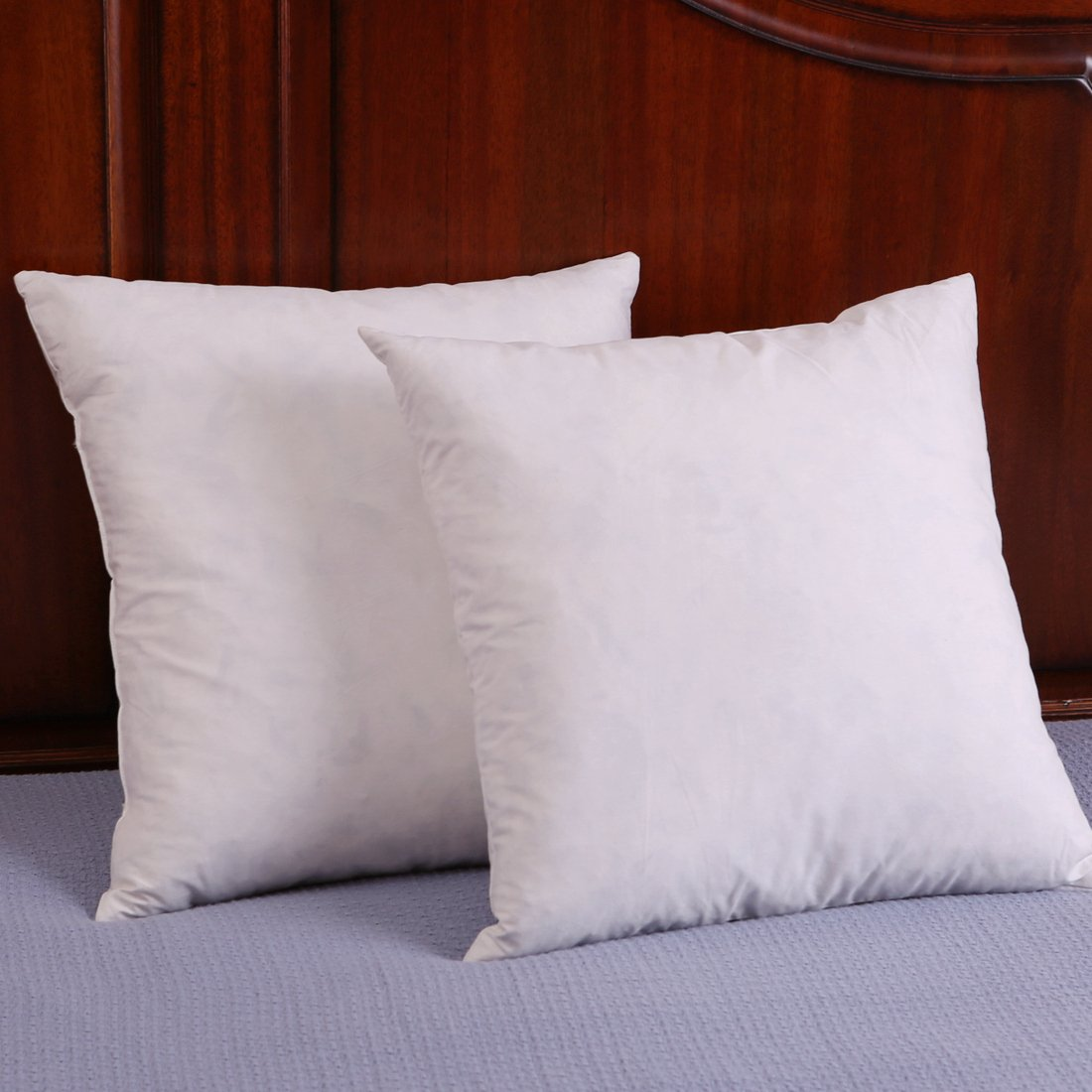Best Set Of 2 Down And Feather Throw Pillow Insert Decorative This Month