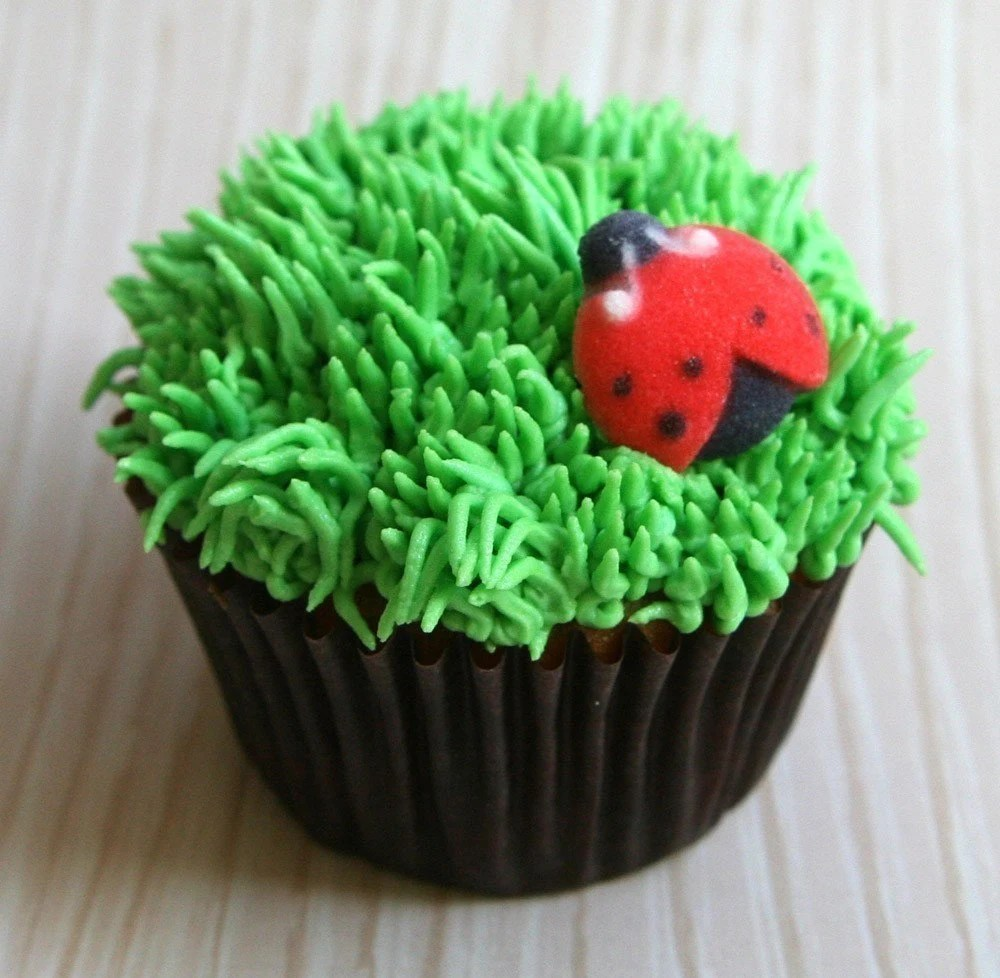 Best Ladybug Edible Sugar Decorations For Cupcake And Cake This Month