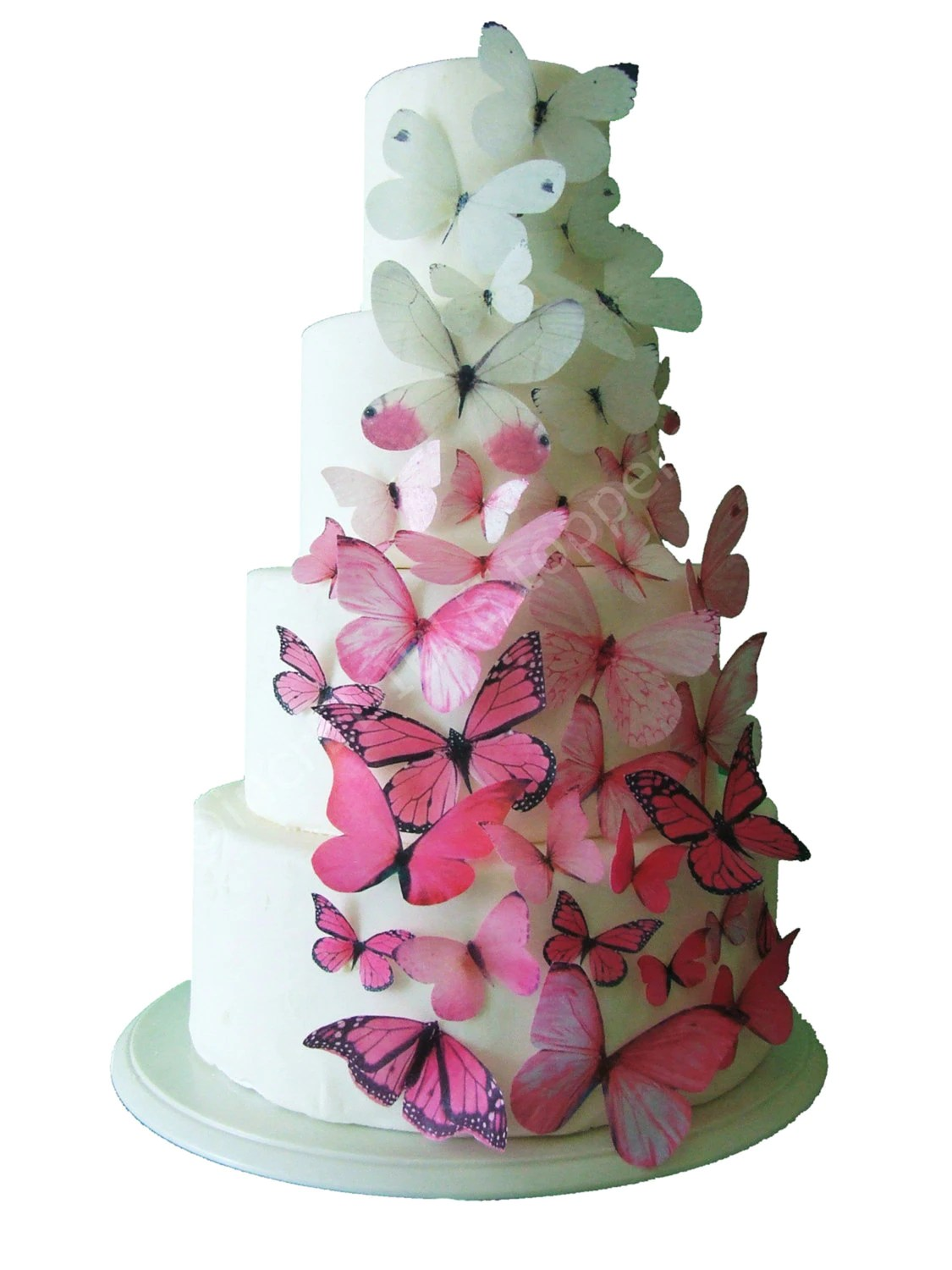 Best Incredible Toppers Ombre Edible Butterflies In Pink Cake This Month