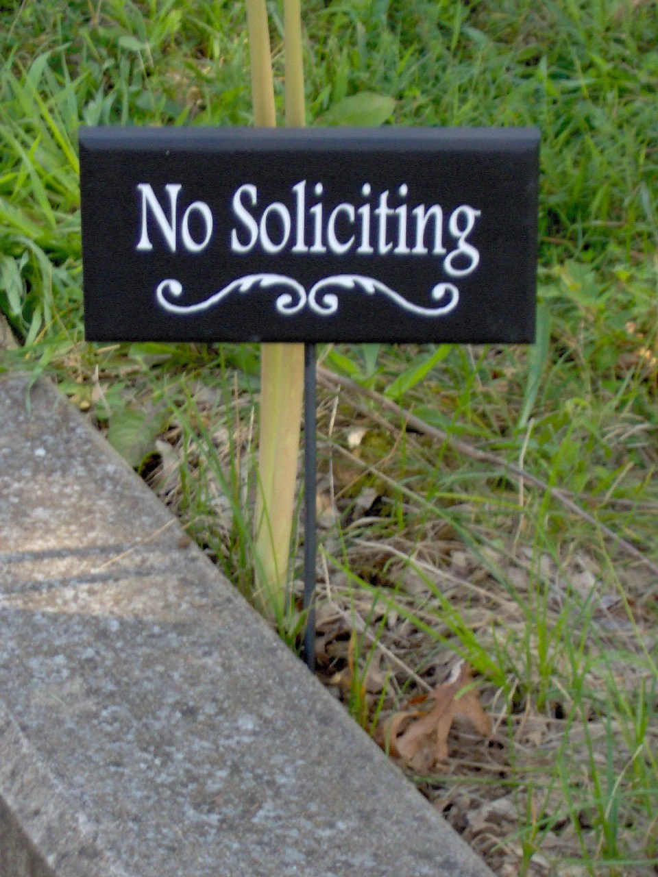 Best No Soliciting Decorative Swirl Wood Sign Outdoor Vinyl Yard This Month