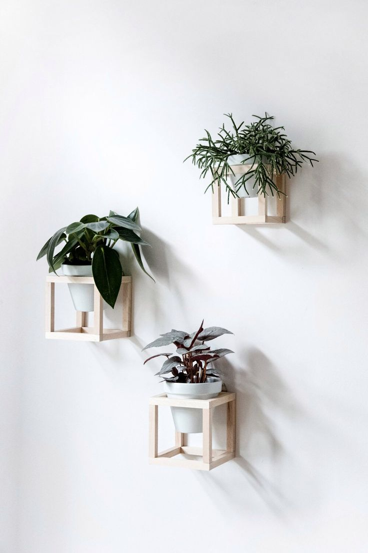Best 25 Wall Planters Ideas On Pinterest Natural Framed This Month