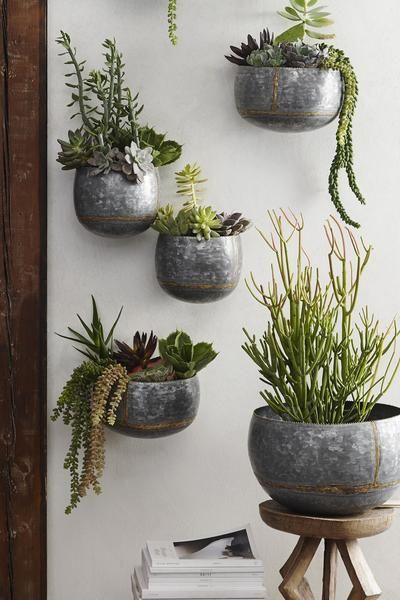 Best 25 Best Ideas About Wall Planters On Pinterest Diy This Month