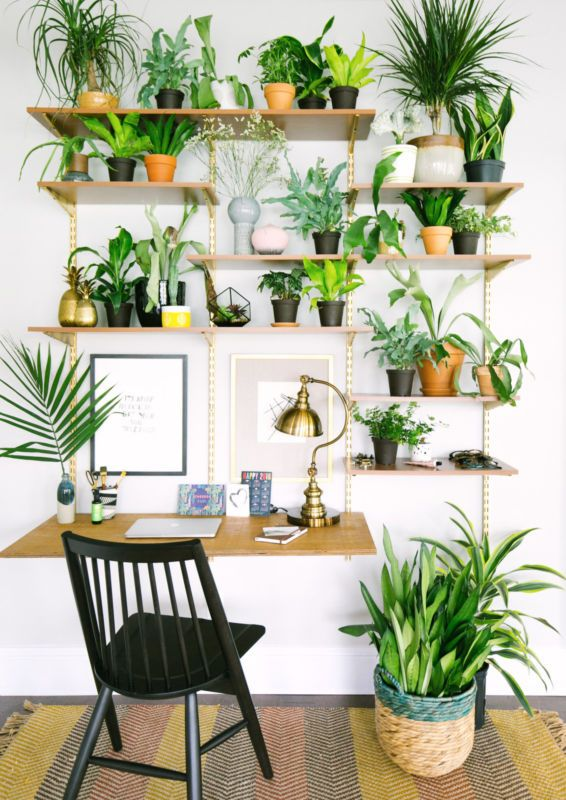 Best 25 Best Ideas About Plant Wall On Pinterest Landscape This Month