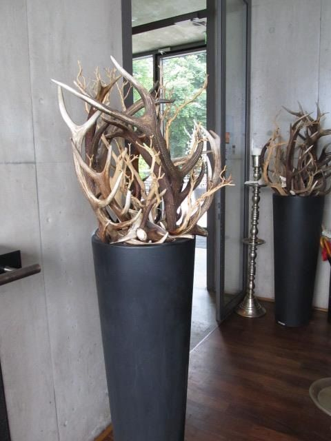 Best 25 Best Ideas About Deer Antler Decorations On Pinterest This Month