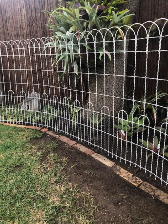 Best Decorative Galvanized Wire Double Loop Roll Top Fencing This Month