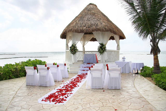 Best Tropical Wedding Tips Whatsyourtheme This Month