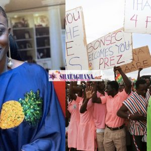 """""""Without free SHS, all students in school now would've become armed robbers""""- Diana Asamoah"""