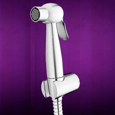 Apollo-stainless-bidet-sprayer-m