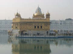 Visit the holiest site for the Sikh people. Watch as volunteers prepare roti and curry for 40,000 people, Sikhs bath in the holy water and foreigners look ridiculous with bright orange bandanas covering their heads like gangsters. (You had to cover your head to enter the temple.)
