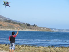 Word on the street is that flying kites could be made illegal on California beaches, along with drinking, dogs and pretty much all fun.